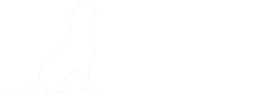Spokane Labradors